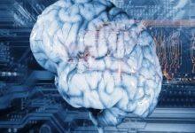 Photo of پاورپوینت علوم اعصاب چیست