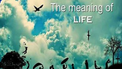Photo of پاورپوینت نظریه های معنای زندگی