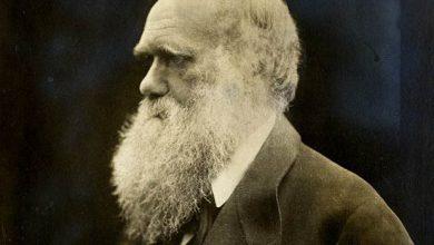 پاورپوینت نظریه های داروین و اصول آن